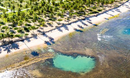 Praia do Forte volta ao WSL