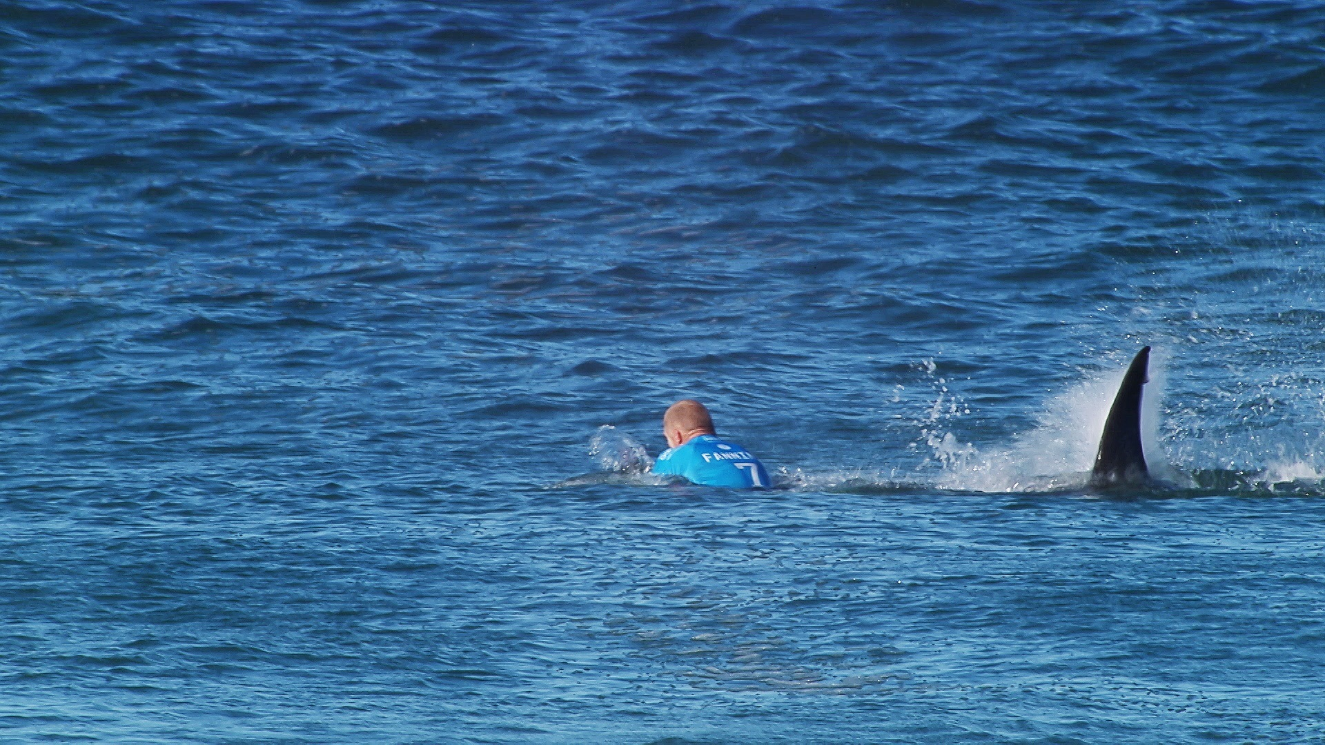 Mick Fanning of Australia is attacked by a shark during the Final of the JBay Open on Sunday July 19, 2015. Fanning was not harmed during the incident.
