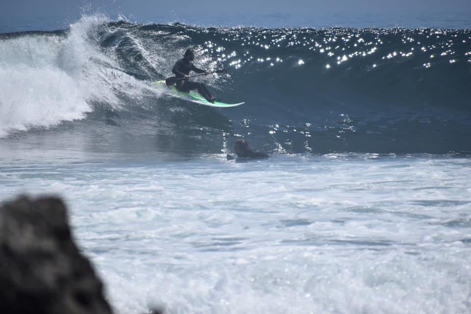 Paulo RIbas, presidente da Associação Paulista Waveski Surf (APWS) / Foto Arquivo Pessoal