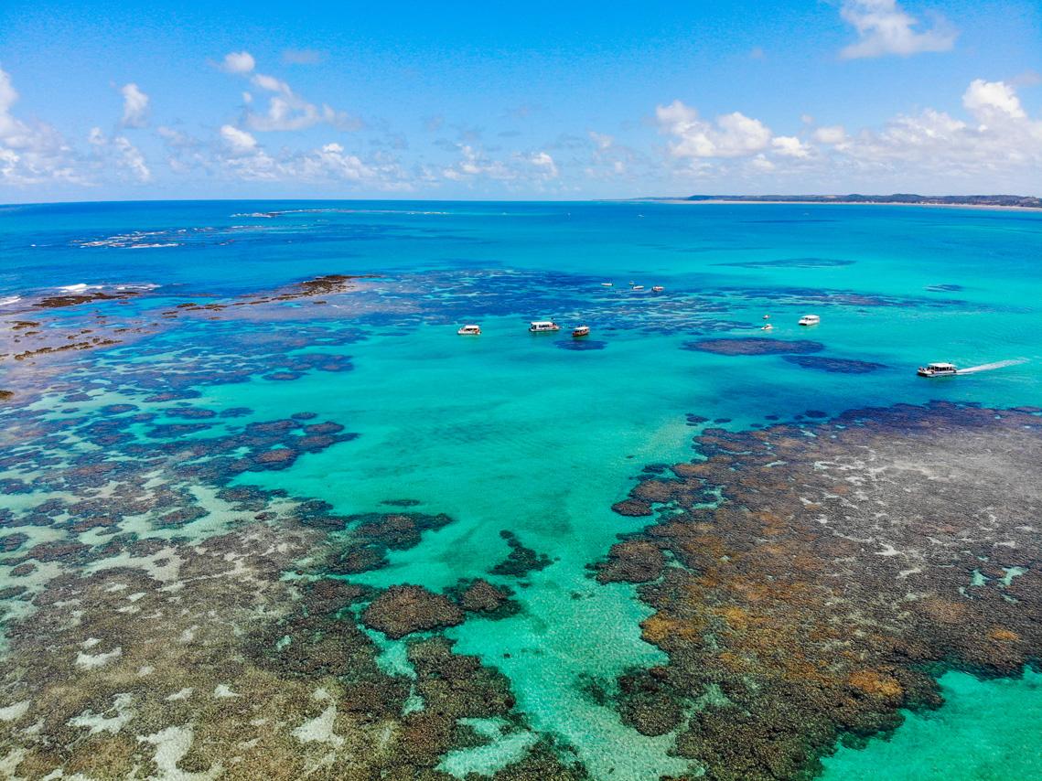 A SOS Mata Atlântica  apoiou a criação de mais de 500 áreas protegidas e 2 milhões de hectares de áreas marinhas protegidas. Foto Dii Camera